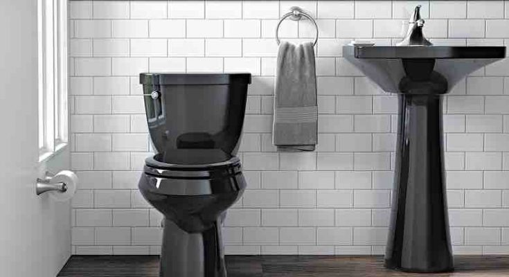 Lead Image for toilet aids for the elderly and injured